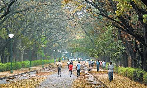 escorts in Cubbon Park